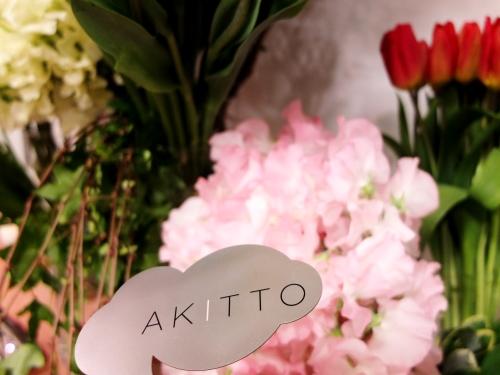 春の展示会3 AKITTO